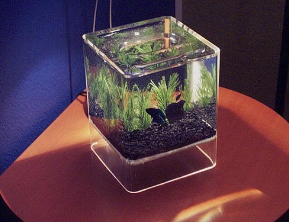 Что можно сделать в аквариуме своими руками 553